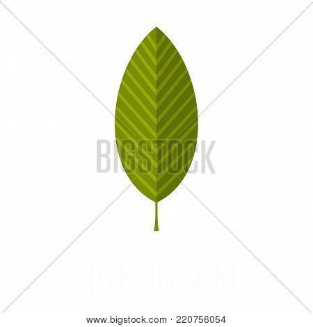 Hornbeam leaf icon. Flat illustration of hornbeam leaf vector icon isolated on white background