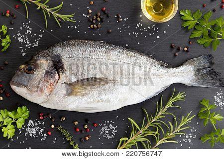 Dorada fish gilt-head bream with herbs and spices on a dark background. Dorada, rosemary, thyme, oil, salt, pepper, parsley.