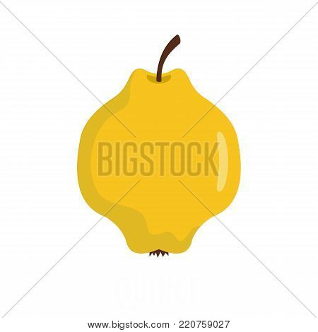 Quince icon. Flat illustration of quince vector icon isolated on white background
