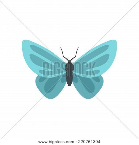 Unusual butterfly icon. Flat illustration of unusual butterfly vector icon isolated on white background