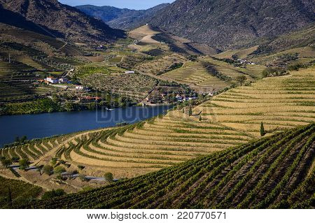 Scenic view of the beautifull Douro Valley with vineyards and terraced slopes in the Douro Region, Vila Nova de Foz Coa, Portugal; Concept for visit Portugal and most beautiful places in Portugal