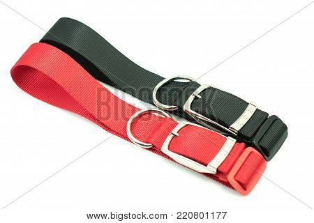 Pet supplies about collars for dog on white background.  Collars of black and red.