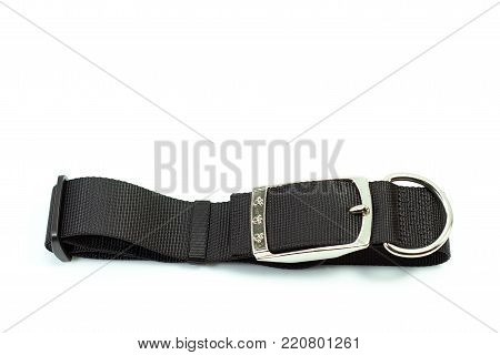 Pet supplies about collars for dog on white background.  Collars of black