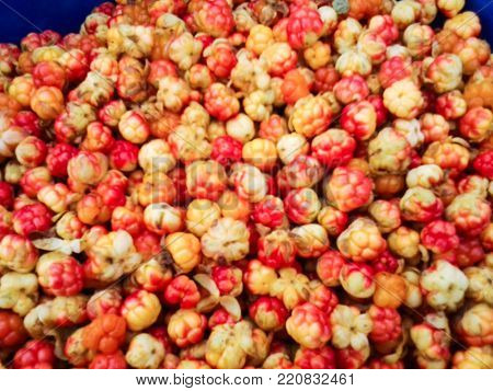 The northern cloudberry berry grows on swamps and mosses.