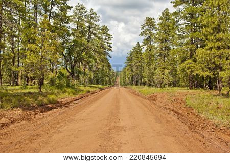 A view of Schnebly Hill Road north of Sedona Arizona. This road runs between Sedona and Flagstaff. Sections of it can be extremely rough requiring a tall truck or 4x4. This view faces north toward Flagstaff.
