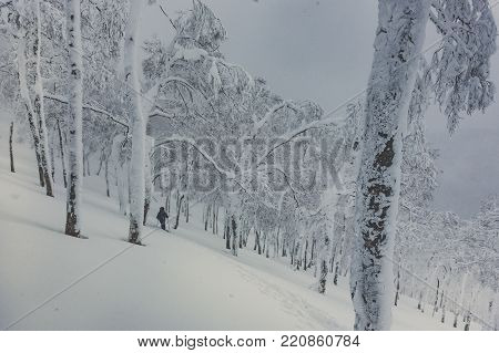 Skier on snowy trail up Mount Shiribetsu in Hokkaido, Japan