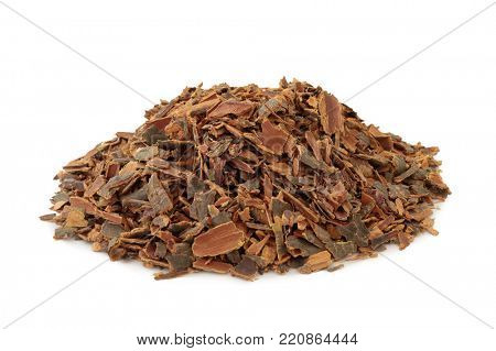 Buckthorn bark herb used in alternative herbal medicine to treat skin disorders, parasites, gallstones and has  laxative properties plus other health benefits, on white background. Rhamnus frangula.