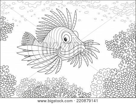 A striped scorpion fish swimming over a coral reef in a tropical sea, a black and white vector illustration in cartoon style for a coloring book