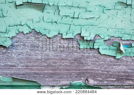 Old grunge cracked rough obselete turqoise paint on dry vintage wood board as retro background
