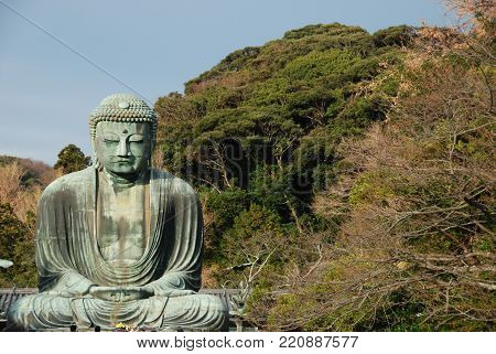 Statue of Great Buddha or originaly Daibutsu at Kotoku-in Temple in Kamakura, Japan