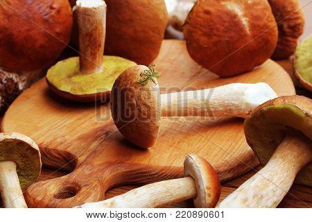 fresh mushroom boletus edulis on cutting board .