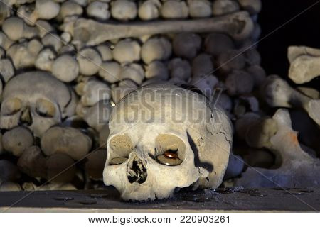 The exposed skull that brings happy day