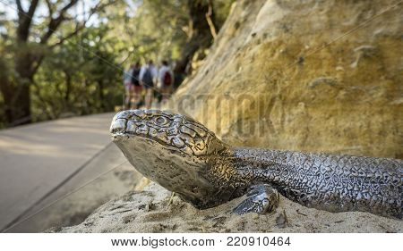 Sydney, Australia - Apr 18, 2017: Metal lizard figure placed along Three Sisters Footpath overlooking blurred out recreational walkers in background. Echo Point, Katoomba, Blue Mountains National Park.