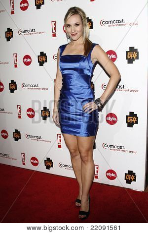 PASADENA - JAN 5: Cristina Gibson at the Comcast Entertainment Group TCA Cocktail Reception held at the Langham Hotel, Pasadena, California on January 5, 2011