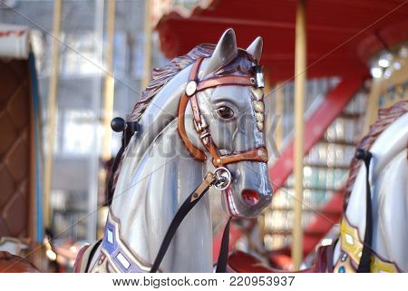 Close up of a Carousel Horse at