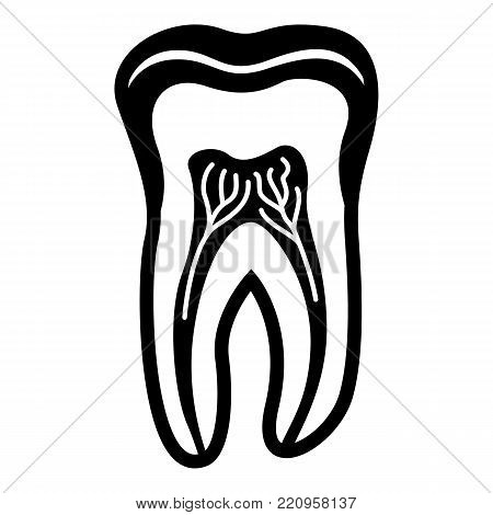 Tooth structure icon. Simple illustration of tooth structure vector icon for web