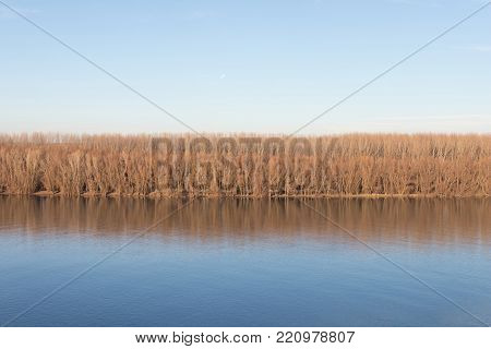 Beautiful Autumn trees reflecting in river River Reflection.