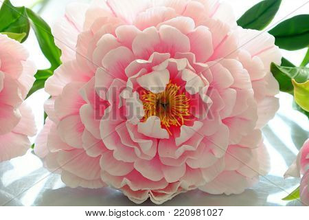 Peony Flower From Clay