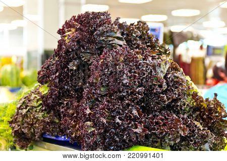 Big sheaf of fresh colour salad in marketplace