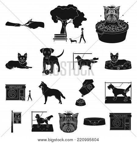 Pet black icons in set collection for design. Care and education vector symbol stock illustration.