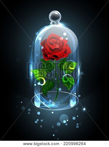 Red, eternal rose under a sparkling crystal dome on a dark background. Red Rose. Vector illustration.