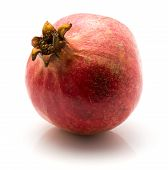 One red pomegranate isolated on white background poster