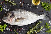 Dorada fish gilt-head bream with herbs and spices on a dark background. Dorada, rosemary, thyme, oil, salt, pepper, parsley. poster
