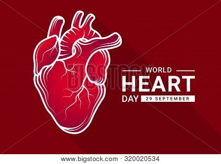 World Heart Day With Gradient Red Human Heart Real And White Outline Drawing Sign On Dark Red Backgr