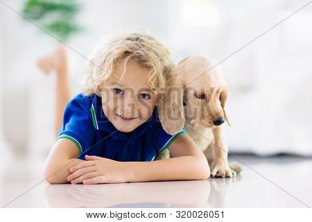 Child Playing With Baby Dog. Little Girl And American Cocker Spaniel On Bed At Home. Kids And Pets A
