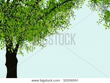 Lonely vector tree