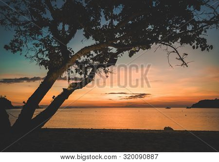 Beautiful sunset over the sea with a view at silhoutte tree. Travel, vacation, holidays background. Bali island, Indonesia
