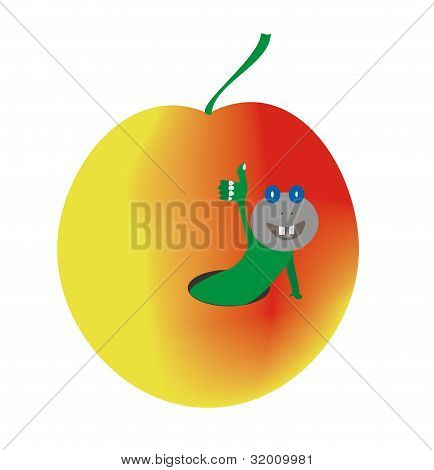 The vector image of a worm checked apple