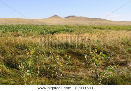 Carnegie Hill buttes