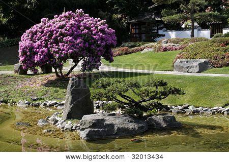 Japanese Garden In Germany