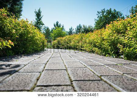 A Cobblestone Path Runs Through The Green Garden On A Sunny Summer Day, A Garden With Flowers Trees