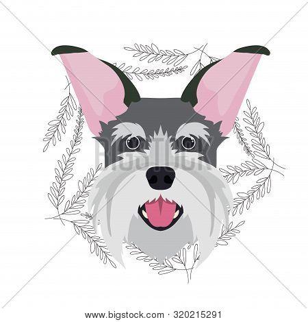 Head Of Cute Schnauzer Dog On White Background Vector Illustration Design