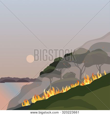 Forest Fires Disaster Green Trees Flat Vector. Wildfires Destroy Woodland Nature Environment Cartoon