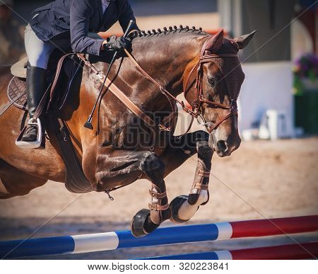 A Chestnut Horse, Dressed In Brown Horse Gear, With A Rider In The Saddle Jumps Over A High Red And