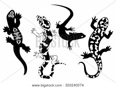 Set Of Stylized Lizard. A Collection Of Decorative Lizards. Black White Reptile Illustration. Vector