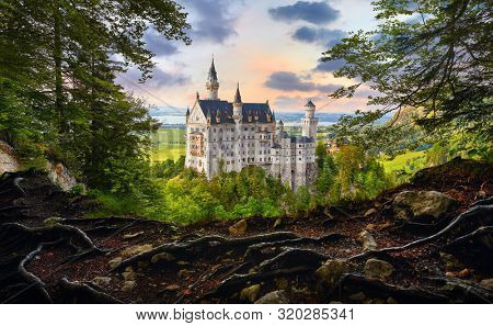 Fairy-tale Neuschwanstein Castle in Bavaria, Germany. View from the bluff with tree roots at famous vintage landmark. Picturesque evening sunset landscape.