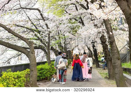 OSAKA, JAPAN, April 7, 2019 : Japanese people wearing colorful clothes are walking along the shore at the Kema Sakuranomiya Park to celebrate new spring .