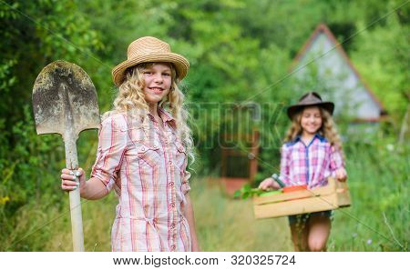 Girls With Gardening Tools. Summer At Countryside. Sisters Helping At Backyard. Gardening Basics. Ch