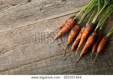 Bunch Of Fresh Unwashed Carrots With Greens On Old Wooden Planks, Top View