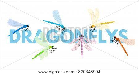 Dragonflies Cartoon Vector Word Concept Banner. Damselflies Sitting On Text. Beautiful Insects Flyin