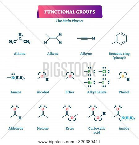 Functional Groups Vector Illustration. Chemical Formula Reaction Explanation Model List. Educational