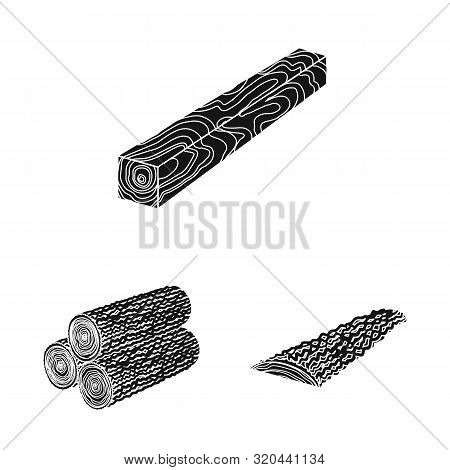 Vector Illustration Of Hardwood And Construction Symbol. Collection Of Hardwood And Wood Stock Symbo