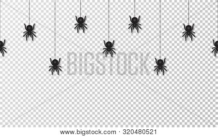 Hanging Spiders For Halloween Decoration, Seamless Pattern. Scary Spiders Hanging On Cobweb, Transpa