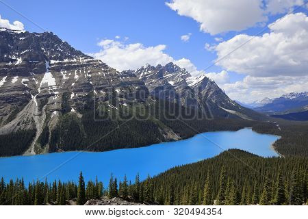 Peyto Lake In Banff National Park In Canada
