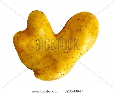 Ugly Potato In Heart Shape On White Background Isolated. Funny, Weird Vegetable. Food Waste Concept.