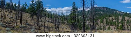 Panorama Of Okanogan Lake Mountains In Kelowna, British Columbia, Canada On A Sunny Day Looking At B